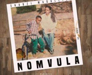 ShabZi Madallion – We on Fire Ft. Erick Rush & Zikhona (Remix) Mp3 download