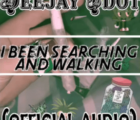 Deejay Vdot – I'vebeen Searching & walking Ft. Kabza De small & Mdu A.k.a. Trp mp3 download
