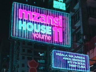Various Artists – House Afrika Presents Mzansi House Vol.11 zip download