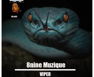 8nine Muzique – Viper mp3 download