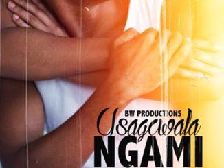BW Productions – Usagcwala Ngam Ft. T-Man mp3 download