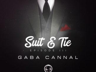 Big Sky & LuuDeDeejay Ft. Sbhanga – Fire (Gaba Cannal Suit & Tie Mix) mp3 download