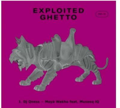 DJ Qness – Moya Wakho Ft. Museeq IQ mp3 download