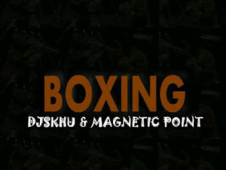 DJ Skhu & Magnetic Point – Boxing Mp3 download