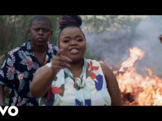 Distruction Boyz – Ubumnandi Ft. DJ Tira, Dladla Mshunqisi & Feerless Boyz Mp4 Download