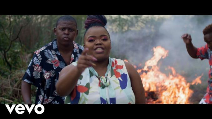 Distruction Boyz – Ubumnandi Ft. DJ Tira, Dladla Mshunqisi & Feerless Boyz Mp4 Download