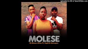 Dj Mimmz Africa - Molese Ft. Cupid & Morongwe (Original) mp3 download