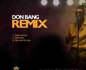 Don Bang – Yebo Remix mp3 download