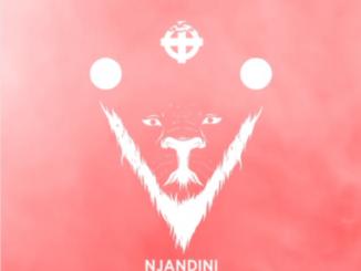 Kwesta – Njandini Lyrics