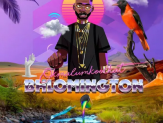 Okmalumkoolkat – The Mpahlas mp3 download