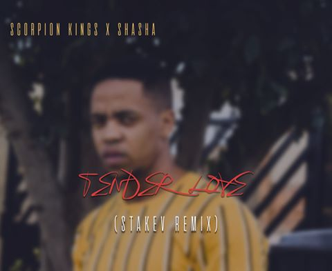 Scorpion Kings – Tender love (Stakev Remix) ft Shasha mp3 download