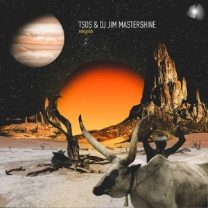 TSOS & DJ Jim Mastershine – Polanete Mp3 download