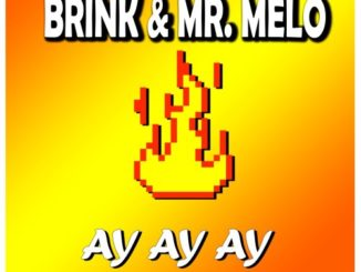 Brink & Mr. Melo – Ay Ay Ay [Radio Edit] mp3 download