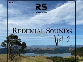 Buddynice – Redemial Sounds Vol 2 (Deep House) mp3 download