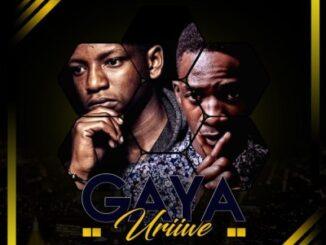 Jah Signal & Dj Pressure ZW – Gaya Uriwe (Amapiano Mix) mp3 download