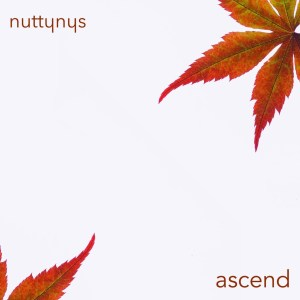 Nutty Nys – Ascend mp3 download