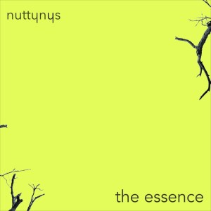 Nutty Nys – The Essence Mp3 download