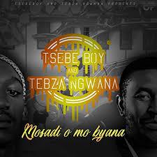 Tsebe Boy & Tebza Ngwana - Mosadi O Mo Byana Mp3 download