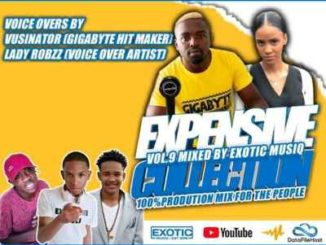 Unlimited Soul & Exotic Musiq – Expensive Collection Vol. 9 mp3 download