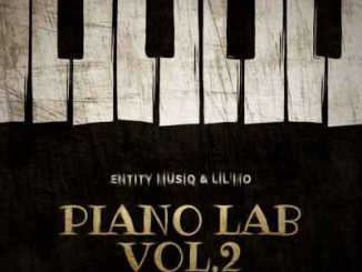 Entity MusiQ & Lil'Mo – Piano Lab Vol.2 Mix Mp3 download