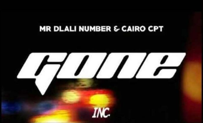 Mr Dlali Number & Cairo CPT – Gone