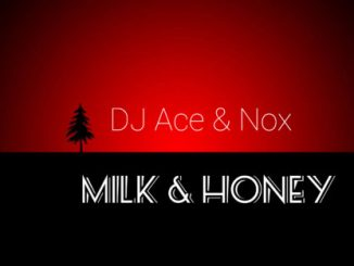 Dj Ace & Nox- Milk & Honey