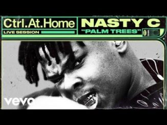 Nasty C – Palm Trees (Live Session)