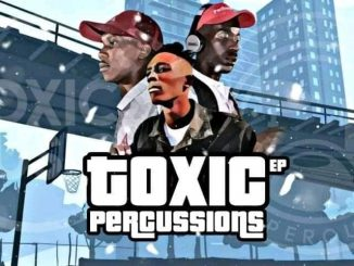 Team Percussion & Toxic MusiQ – Toxic Percussions zip download