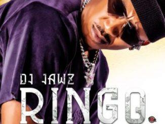DJ Jawz - Ringo ft Bob Mabena, Zuma, Reece Madlisa & Busta 929