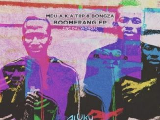 MDU aka TRP & Bongza – Boomerang Zip download