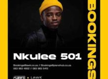 Nkulee 501 – Superfly (Main Mix) mp3 download