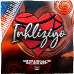 Download mp3: Semi Tee & MDU aka TRP ft. Mpho Spizzy – Inhliziyo (Official Audio)