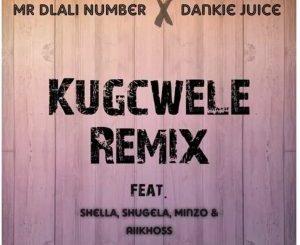 Mr Dlali Number & Dankie Juice – Kugcwele Remix mp3 download